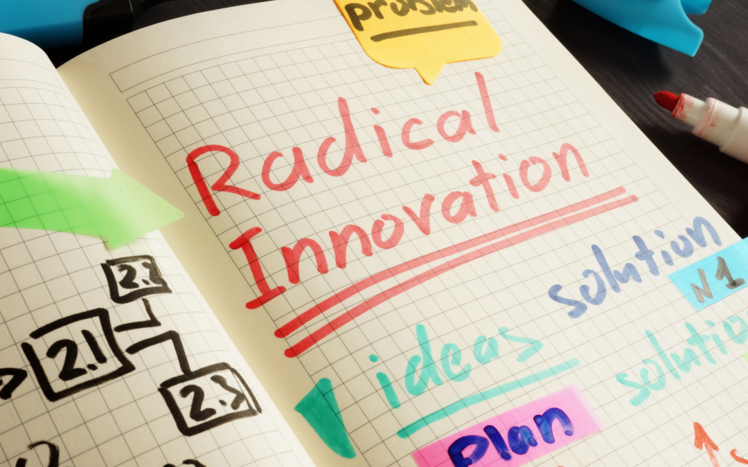 Radical Innovation: Systems Change From the Inside Out