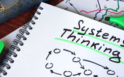 Systems Thinking in Action: The Eileen Fisher Story